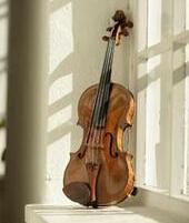 wpid-violin-window-1.jpg.jpeg